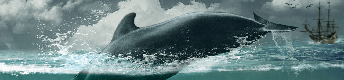 """good and evil moby dick essay This list of important quotations from """"moby dick"""" will help you work with the essay topics and thesis statements above by allowing you to support your claims."""